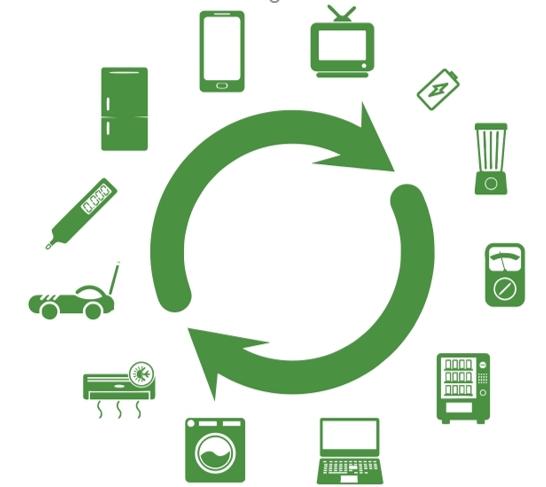 cycle ecology