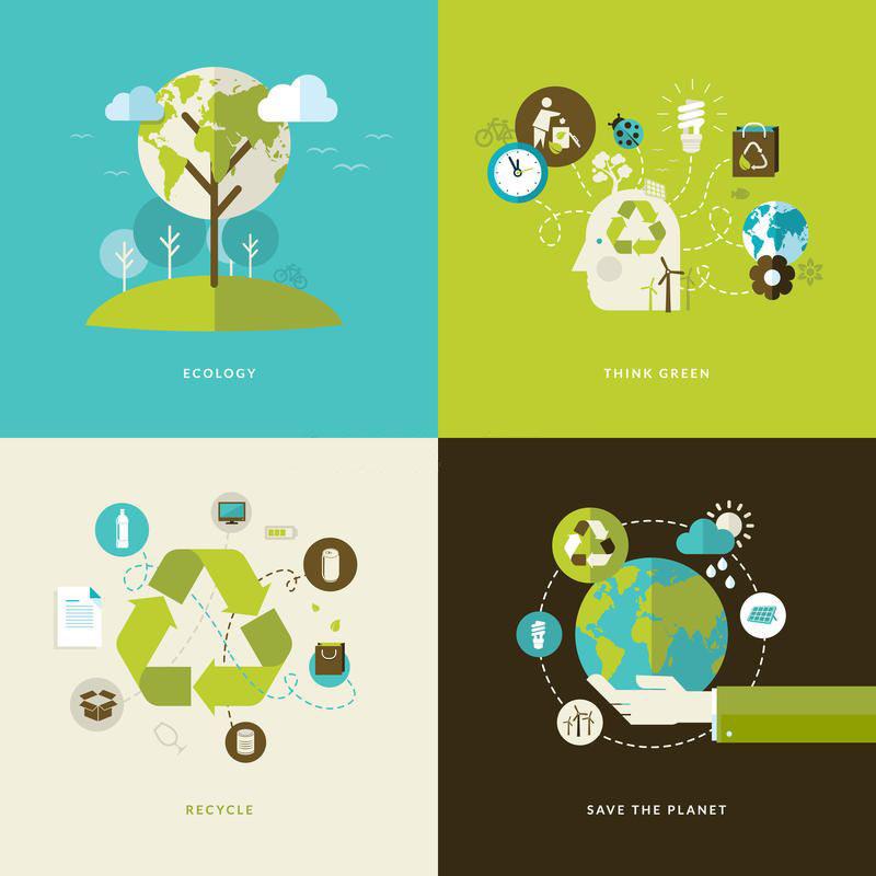 School ecology